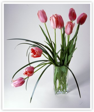 Flower Arrangement Ideas Floral Arrangement 101 Flower Of The