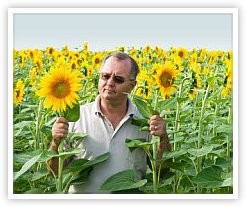 Sunflower Grower